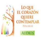 'Lo que el corazón quiere contemplar' Audio Libro (2ª Parte)
