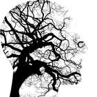 ¿Cómo medir el nivel de estrés a través de la piel? Posibles aplicaciones