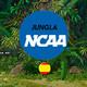 JUNGLA NCAA 2x6 17/12/17