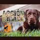 Acción Canina Radio 45