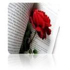 Mi amor... ¡por una rosa!, de Ali Al Haded