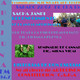 Sacha janpi (reconocimiento de plantas medicinales)