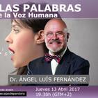 MÁS ALLÁ DE LAS PALABRAS - Conferencia en Directo con el Dr. Ángel Luís Fernández