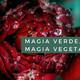Magia verde, Magia vegetal. Cap. 8 El poder mágico de la higuera