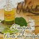 Nutribella- FUNCIONES DEL ACEITE DE EUCALIPTO