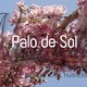 Nutribella - PALO DE SOL
