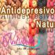 Nutribella - ANTIDEPRESIVOS NATURALES
