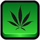 Id #01 historia antigua de la marihuana