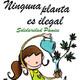 El juicio por la marihuana listo para sentencia + Última hora sobre la prohibición de la estevia (con Josep Pàmies)
