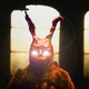 El Conejo Rojo Dice | 01 - La historia de Valhalla (Mitología)