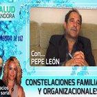 Constelaciones Familiares y Organizacionales por Pepe León
