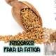 Nutribella - FENOGRECO PARA LA FATIGA