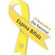 21 de noviembre Día Nacional de la Espina Bífida