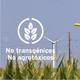 Entrevista a Adriana Arach - No Transgénicos/No Agroquímicos