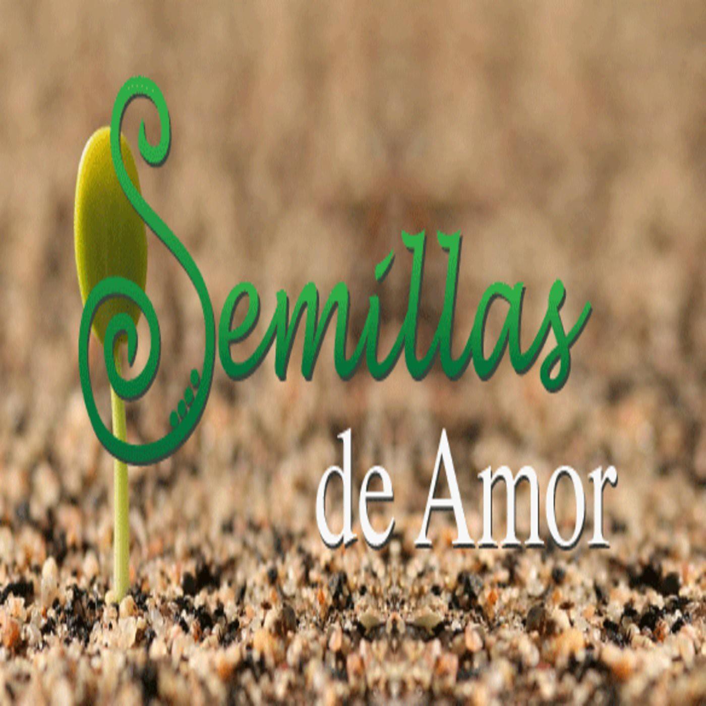 <![CDATA[Iglesia Semillas de Amor]]>