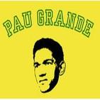 Fútbol Samba: Resumen estaduais 2012 parte 4