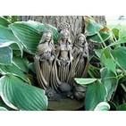 El caldero de Morgana programa 6 - Wicca, hierbas y plantas mágicas y viajes astrales.