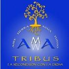 Tribus AMMA