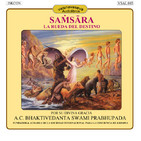 Samsara: La Rueda del Destino