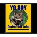 Podcast de Yo Soy Amig@ del Lobo