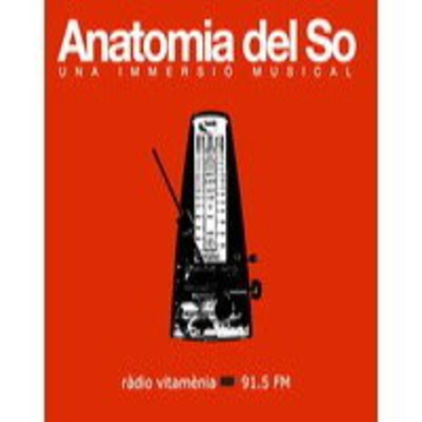 <![CDATA[Anatomia del So]]>