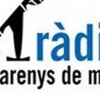 Sardanes a la ràdio