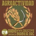Agroactividad