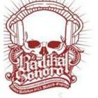 Programa Semanal Radikal Sonoro # 52 Entrevista con la banda LEIZE (26NOV15)