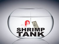 Dan Goodwin – Host of The Shrimp Tank Houston & CEO of Provident Wealth Advisors