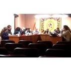 Plens Municipals