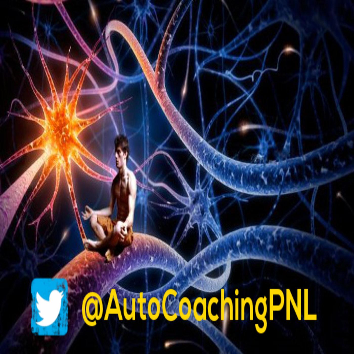 <![CDATA[Auto Coaching PNL]]>