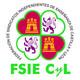 Entrevista a Francisco Bernardos, reelegido Secretario General de FSIE CyL