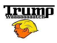 TrumpWaaaaaaaatch DAY 037 2/25/2017