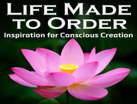 Life Made to Order #105: Law of Attraction: It's All Just Vibrational Feedback