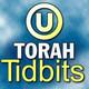 TTA: Parshat Bo 5778