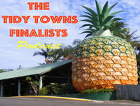 The Tidy Towns Finalists - Episode 2