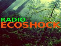Radio Ecoshock: Under the Weather Right Now