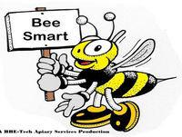 Bee Smart Beehooligans S2:EP2