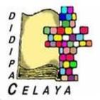 DIDIPAC-CYA