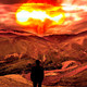 La Vida Sin Nosotros: Sin Lideres #documental #ciencia #apocalipsis #podcast