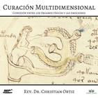 Curación Multidimensional: Conexión entre los órganos físicos y las emociones.