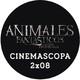 Cinemascopa 2x08 - Animales fantásticos y dónde encontrarlos