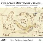 Curación Multidimensional: Conexión entre los órganos físicos y las emociones. Christian Ortiz