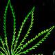 Efer 416 (10-12-17): Cannabis e ciencia