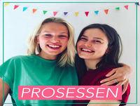Prosessen - Intro