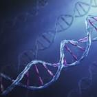 La raíz de los problemas bioeticos, humanos