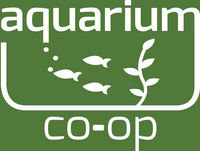 78 Natural Aquariums - Using Nature as much as possible. Live Stream