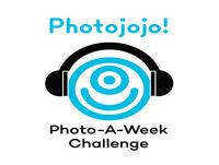 Ep 17 Macro Photography Challenge