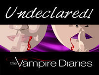 Undeclared TVD - 2.17 and 2.18