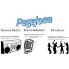 Pegajosa Radio